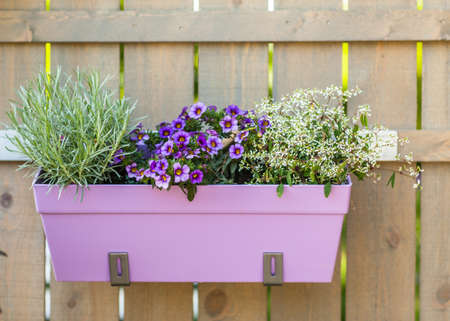 Outdoor flower pot hanging on wooden fence for small garden, patio or terrace Standard-Bild
