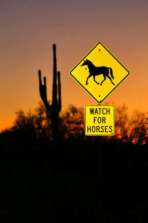 A Watch for Horses sign alongside a highway near the Salt River outside Phoenix, Arizona.