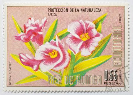 EQUATORIAL GUINEA - CIRCA 1979  A stamp from Equatorial Guinea shows image of a the flower Nerium oleander, circa 1979  Stock Photo