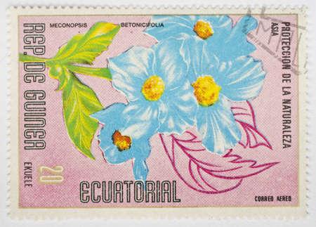 EQUATORIAL GUINEA - CIRCA 1979  A stamp from Equatorial Guinea shows image of a Himalayan blue poppy  Meconopsis betonicifolia , circa 1979