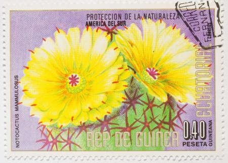 EQUATORIAL GUINEA - CIRCA 1979  a stamp from Equatorial Guinea shows image of the plant Notocactus mammulosus, circa 1979