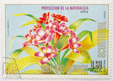 EQUATORIAL GUINEA - CIRCA 1979  a stamp from Equatorial Guinea shows image of a natal lily  or bush lily, Clivia miniata , circa 1979  Stock Photo