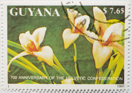 GUYANA - CIRCA 1991  a stamp from Guyana shows image of flowers and commemorates the 700th anniversary of the Helvetic Confederation, circa 1991  Stock Photo
