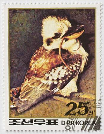 NORTH KOREA - CIRCA 1988  a stamp from North Korea shows image of a kookaburra  genus Dacelo , circa 1988