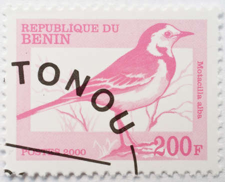 wagtail:  BENIN - CIRCA 2000  a stamp from Benin with Cotonou postmark shows image of a white wagtail  Motacilla alba , circa 2000