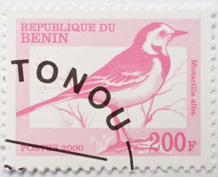 motacilla: BENIN - CIRCA 2000 un sello de Benin con matasellos de Coton� muestra la imagen de una lavandera blanca Motacilla alba, circa 2000