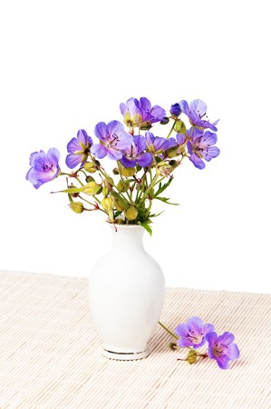 Wild flowers in a vase, it is isolated on the white photo