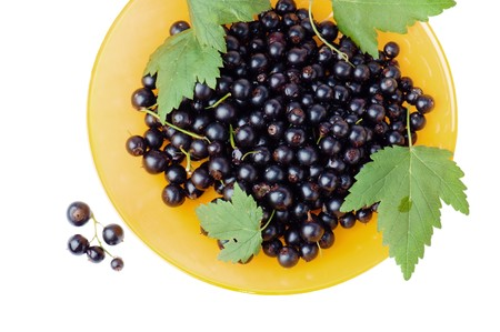Berries of a black currant and leaves on a yellow plate, it is isolated on the white
