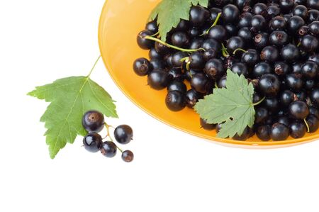 black currants: Berries of a black currant and leaves on a yellow plate, it is isolated on the white