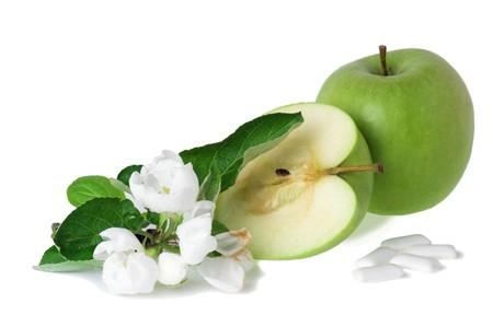 bubblegum: The green apple, blossoming branch and bubblegum