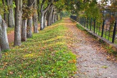 Path in autumn park Stock Photo - 7894795