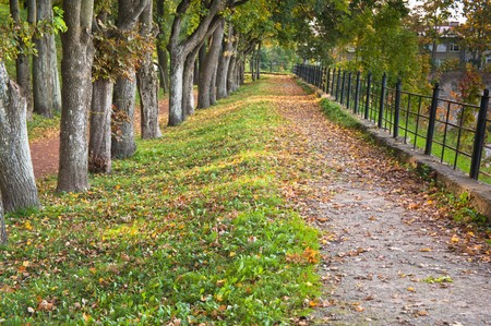 Path in autumn park photo