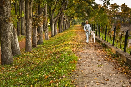 Path in autumn park Stock Photo - 7894812