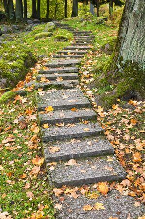 Stone ladder in autumn park Kadriorg, Tallinn photo