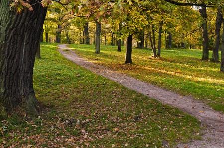 Autumn park Kadriorg, Tallinn photo