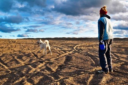 The woman plays with a dog in the fall on the nature Stock Photo - 8103887