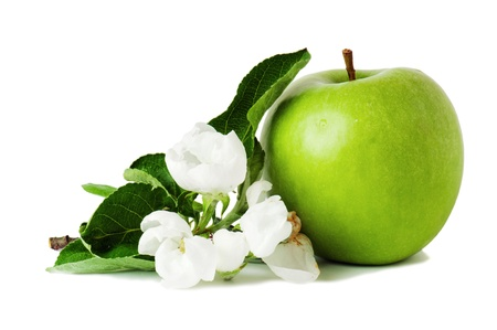 green apple and blossoming branch photo