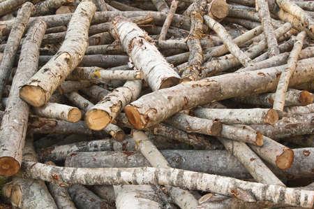 heaped: Heaped aspen logs, a close up
