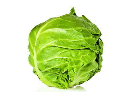 Head of young cabbage, it is isolated on white photo