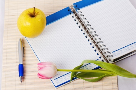 Open notebook, yellow apple and pencil photo