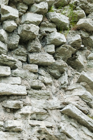 calcareous: Fragment of a wall from a calcareous stone, a background Stock Photo