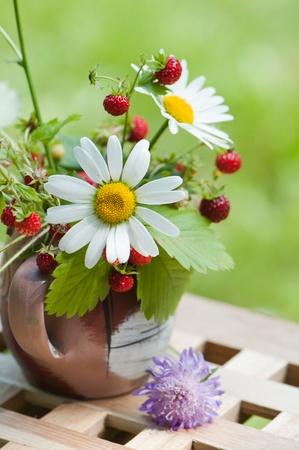 Bouquet d'une camomille et fraise des bois Banque d'images