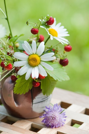 wild strawberry: Bouquet from a camomile and wild strawberry