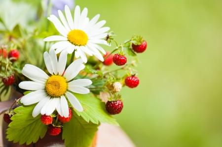 Bouquet d'une camomille et fraise des bois