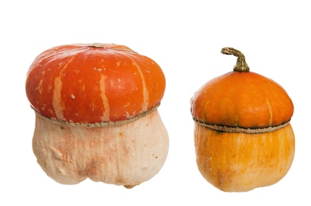 Two decorative pumpkins, it is isolated on white Stock Photo - 10779507