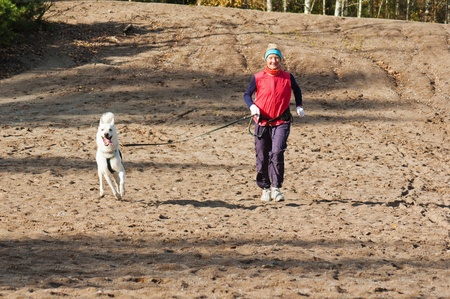 Running the sports woman with a dog Stock Photo - 10873355