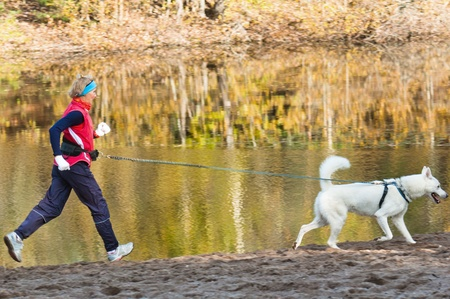 The sports woman with a dog run along coast of the rivers Stock Photo - 10873330