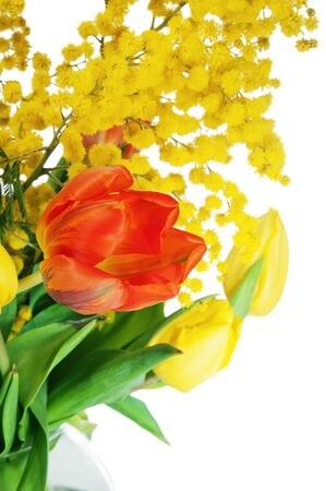 Spring bouquet from tulips and branches of a mimosa, it is isolated on white photo