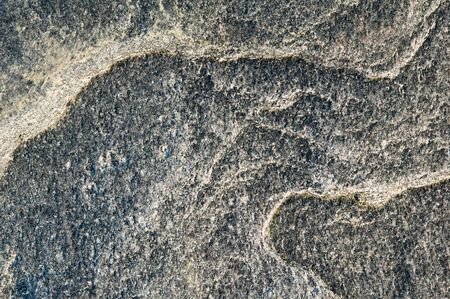 Surface of a marine stone, close up photo