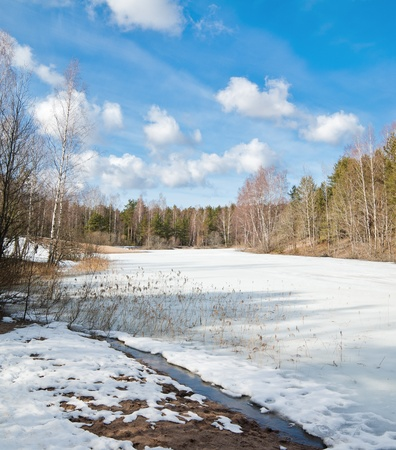 Landscape at the forest lake early spring photo