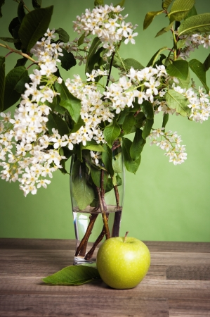 Bouquet of a blossoming bird cherry in a vase on a table photo