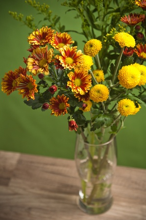 a bouquet of summer flowers, close-up photo