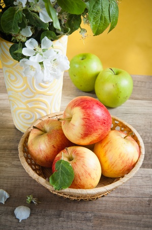Beautiful ripe apples and branches of a blossoming apple-tree in a vase Stock Photo