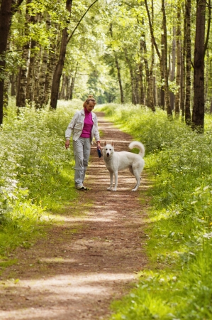 The woman walks with a dog in a wood Stock Photo - 14012536
