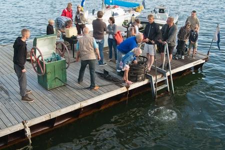 agachado: TALLINN, Estonia - 14 de julio - Demostraci�n de la inmersi�n del buceador bajo el agua en el Tallinn