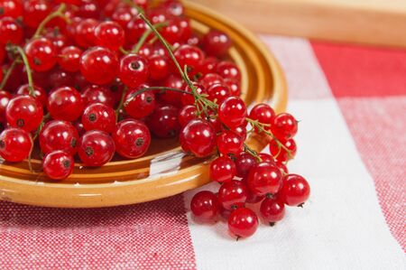 Berries of a red currant in a plate on a table photo
