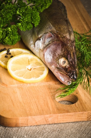 Pike perch on a wooden kitchen board, it is isolated on white Stock Photo - 15563135