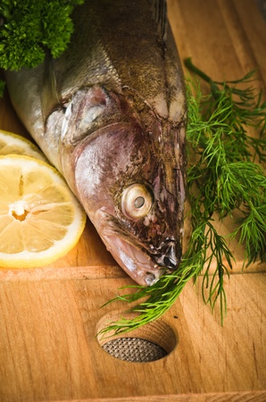 Pike perch on a wooden kitchen board, it is isolated on white Stock Photo - 15563156