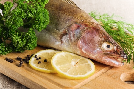 Pike perch on a wooden kitchen board, it is isolated on white Stock Photo - 18003300