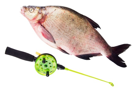 bream and Rod is isolated on a white background photo