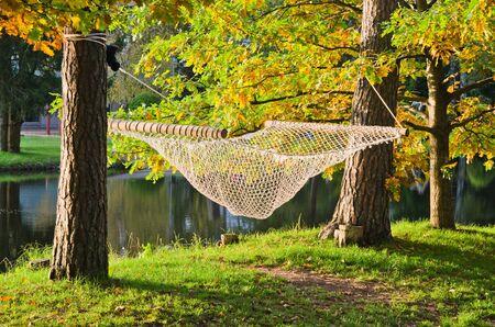 A hammock near the pond in autumn Park photo