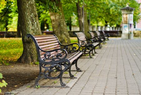 sharpness: Benches in autumn park, small depth of sharpness