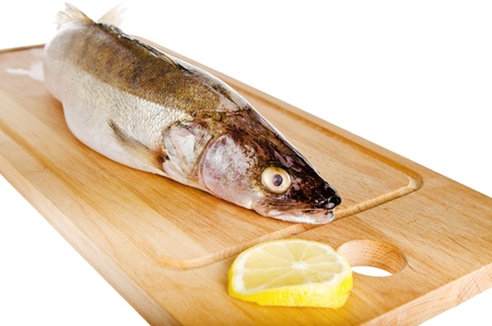 Pike perch on a wooden kitchen board, it is isolated on white Stock Photo - 20201994