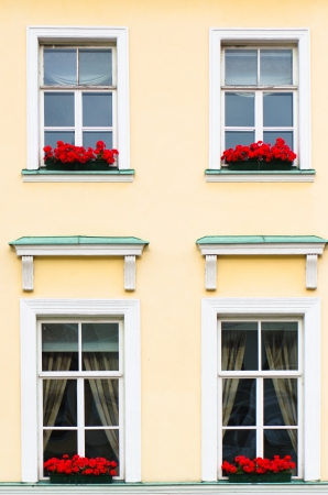 Four Windows with red flowers, close-up