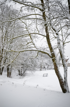 wintery day: Winter landscape with a pond in the countryside Stock Photo
