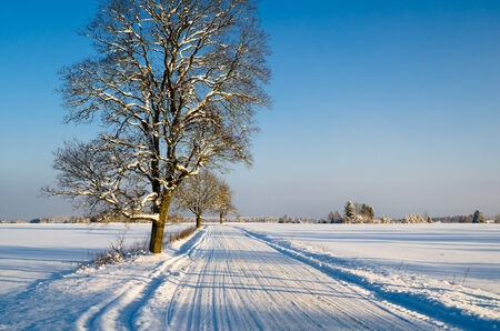 Winter landscape with road to a countryside photo